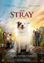 Okładka: The Stray (2017)